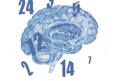 Concussion by Numbers Sheddon Physio Sports Clinic Oakville Mississauga