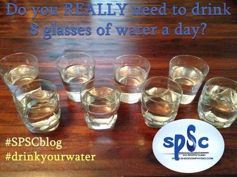 How much waster should we drink -Sheddon Physio Sports Clinic Oakville Mississauga