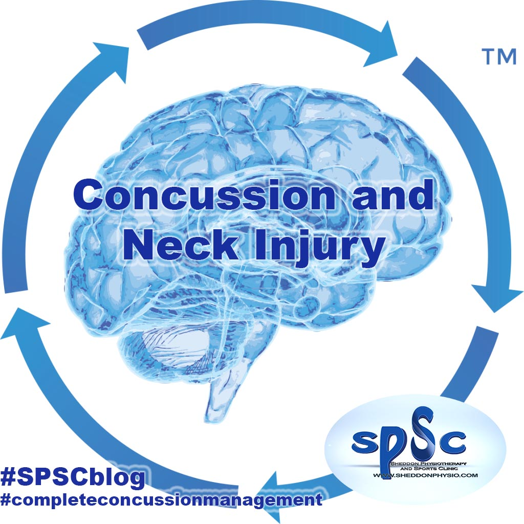 concussion management Sheddon Physioyherapy Sports Clinic Oakville Mississauga