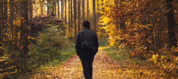 The benefits of a morning walk Sheddon Physio Sports Clinic Oakville